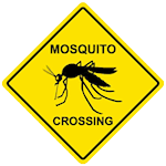 malaria_mosquitocrossing.png
